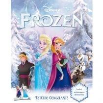 Disney Frozen Estúdio Congelante - DCL