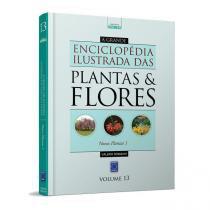 A Grande Enciclopédia Ilustrada das Plantas  Flores - Volume 13: Novas Plantas 1 - Toca do verde