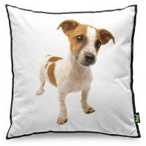 Almofada Love Dogs Black Edition - Jack Russell - YAAY