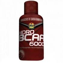 BCAA Hidro 6.000 480ml Laranja - DNA
