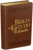 Biblia De Estudo Colorida - Capa Marrom - Bv Books - 1