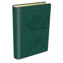 Biblia De Estudo Colorida - Capa Verde - Bv Books - 1