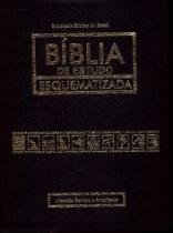 Biblia De Estudos Esquematizada - Capa Couro Bonded Preta - Sbb - 1
