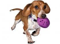 Brinquedo para Cachorro de Borracha - Busy Buddy Twist N Treat PetSafe
