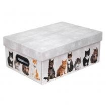 Caixa organizadora cat - Pet star