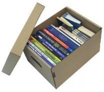 Caixa Organizadora Multi Uso Chies Pequena 4022-5 -