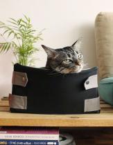 Caixa Para Gatos  Cinza Casaborda -