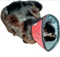 Colar Elizabetano Conforto Cães E Gatos N.2 - Petmed