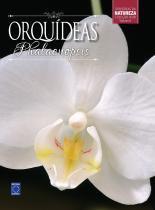 Colecao rubi 6 - orquideas phalaenopsis - Europa
