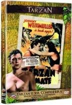 DVD Tarzan E Sua Companheira - 953040