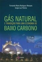 Gas natural e transiçao para uma economia de baixo carbono - Synergia