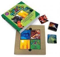 Jogo da memória amazônia - Comdesenho