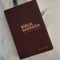 Livro - 'Bíblia NVT - LG (Letra grande) - Marrom