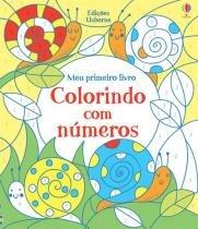 Livro - Colorindo com números -