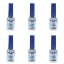 Maru Casco De Cavalo 10ml Blister Vitamina B5 (Kit C/06) -