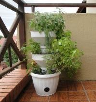 Mini Horta Vertical Auto Irrigável - Verde Vida - Cor Branca - Verde Vida