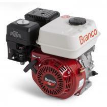 Motor à gasolina 7,0 hp 4 tempos partida manual - CV  B4T-7.0H - Branco Branco