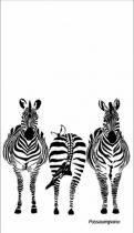 Pano de prato zebra - Passaumpano