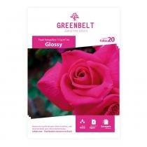 Papel Fotográfico A4 Glossy 115g Greenbelt 20 folhas -