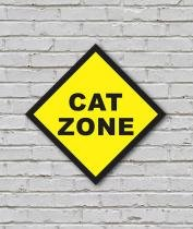 Placa Geek: Cat Zone - LEGIAO NERD
