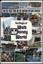 Poster Adesivo Walt Disney World 70x50 cm - Sunset adesivos
