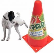 Postinho Adestramento Pipi Park Para Cães - Furacão pet