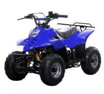 Quadriciclo Elétrico 110cc - Azul -