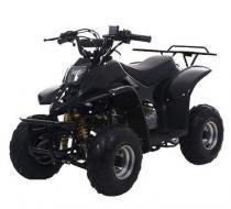 Quadriciclo Elétrico 110cc - Preta -