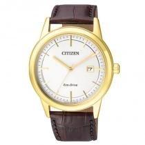 Relógio Citizen Masculino - TZ20573M - Magnum