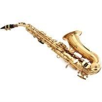 Saxofone Soprano Em Si Bemol Laqueado Wssgd Waldman - Waldman