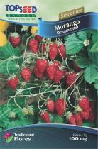 Semente Hortaliças Morango Ornamental com 20 - Comprenet