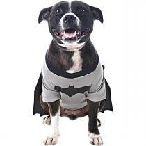 Super Pet - Batdog - Liga da justiça