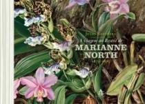 Viagem Ao Brasil De Marianne North, A - Sextante - 1