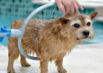 Woof Washer 360 Lava Jato Para Banho Caes Cachorros Pets (Bsl-lac-1) - Braslu