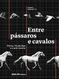 Livro - Entre pássaros e cavalos -